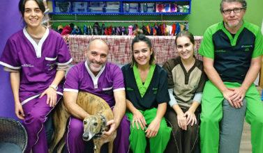 En Animalfisio cuidamos de la salud de tu mascota y ofrecemos una atención de calidad.