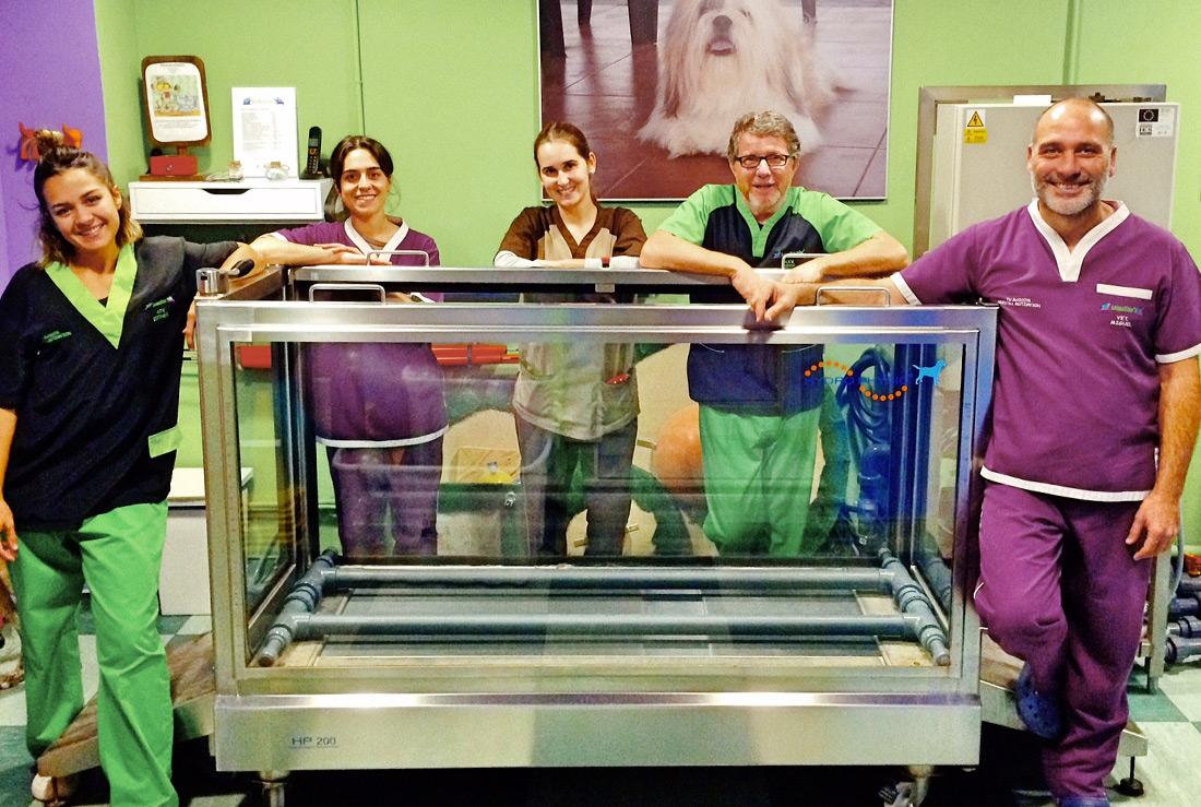 Especialistas en Rehabilitación para mascotas en Almería con más de 10 años de experiencia.